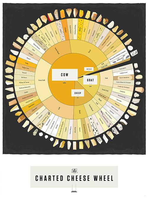 Виды сыров - инфографика