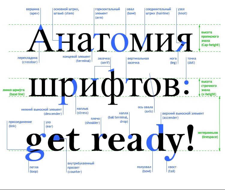 основные элементы шрифтов